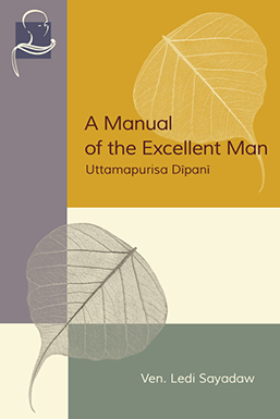 Cover picture of Manual of an Excellent Man